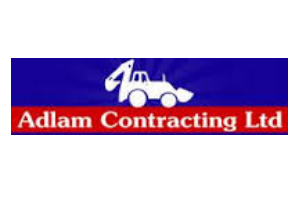 Adlam Contracting Ltd Brantford  ImRenovating.com