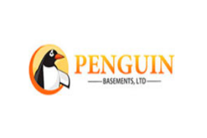Penguin Basement Woodbridge  ImRenovating.com