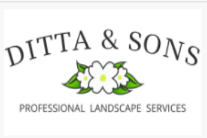 Ditta & Sons Niagara  ImRenovating.com
