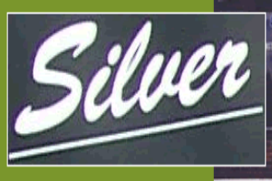Silver Carpet Ajax  ImRenovating.com